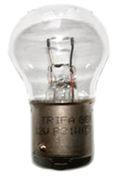 Teckentrup CarTeck Glühlampe 12 V / 21 W