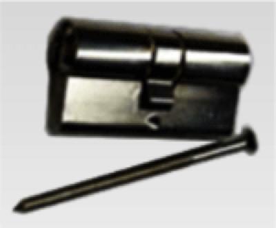 Profilzylinder PZ 30/30 für Teckentrup CarTeck Nebentüre
